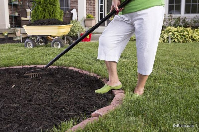 Make Mulch for Plants
