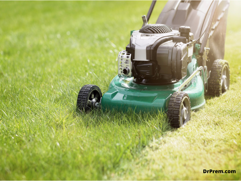 Don't cut the grass too low