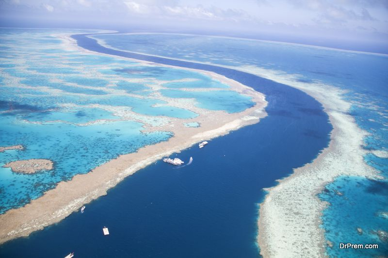 Protect The Great Barrier Reef