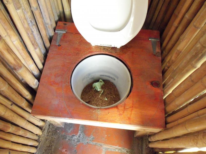 Bamboo toilet