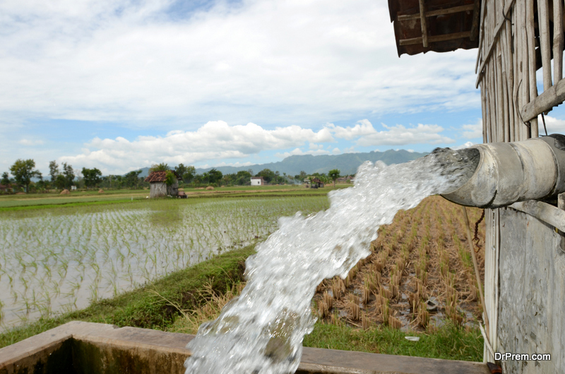 Improper-irrigation