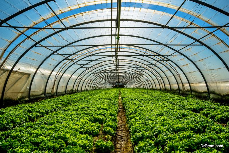 Greenhouse-Plans