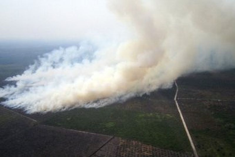 1997 Indonesian forest fire