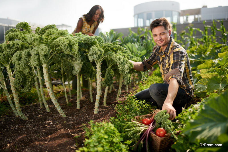 Organize-local-food-days