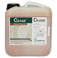 Cease Biological Disease Control Pesticide from BioWorks