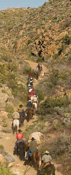 Horsemen in Box Canyon