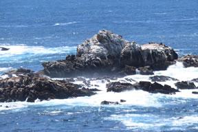 Sea Lion Rocks marker image