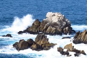 Sea Otter Rock marker image