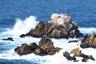 Sea Otter Rock marker icon
