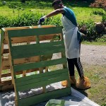 Lowell School Learning Disabled Pollinators
