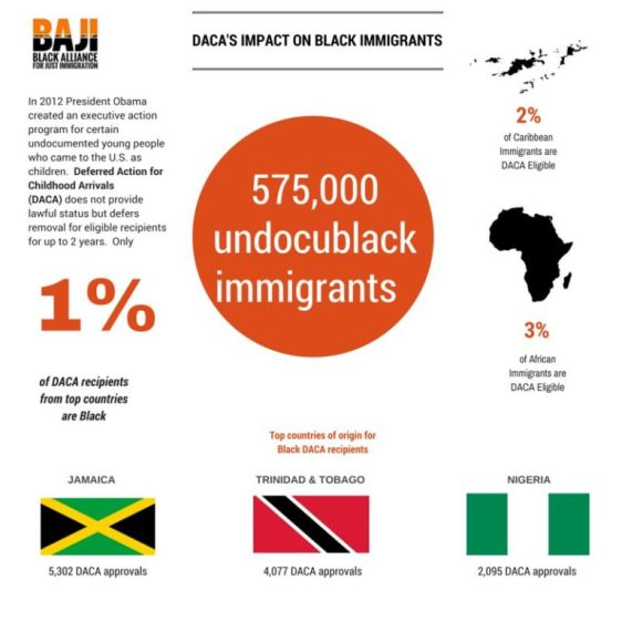 blackimmigrants-daca graphic.jpg