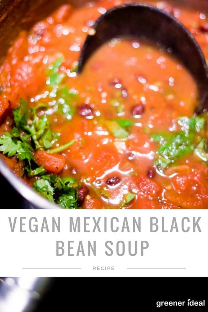 With fresh flavors, a spicy kick, and protein in every bite, this soup is perfect for all seasons. Serve the soup with nachos on the side, a dollop of sour cream in the middle or grated vegan cheese sprinkled over the small mounds made by legumes and fruits.