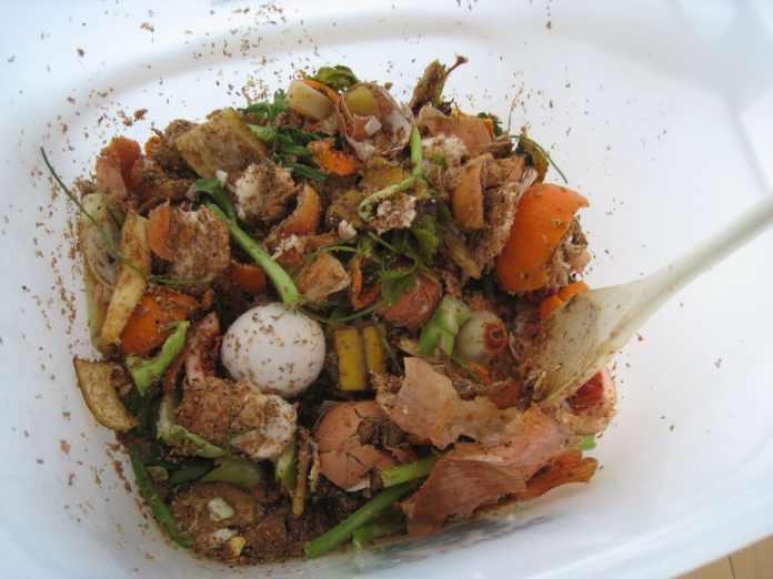 Bokashi Compost