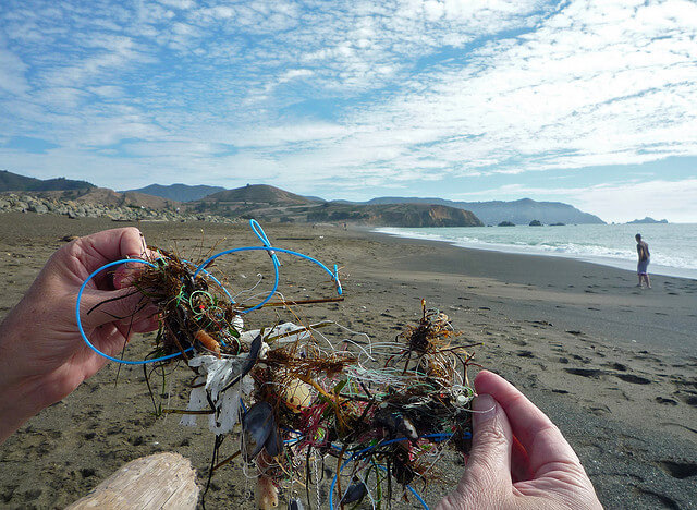 """the rising danger of marine pollution According to a pew report on water pollution, the latter is the primary source of pollution in coastal waters, which is, in turn, where the """"most demonstrable effects on living resources occur""""."""
