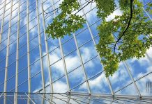 leaves and glass building