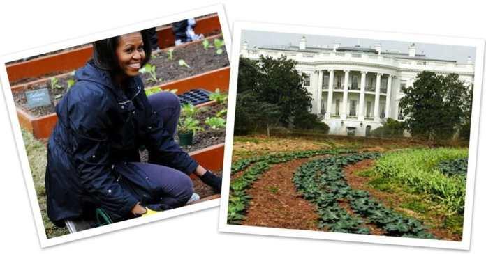 Michelle Obama White House Garden