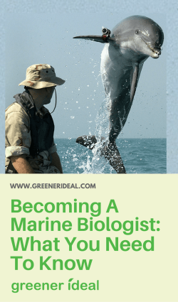 before becoming a marine biologist