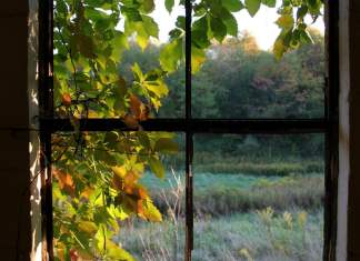 natural light through a window