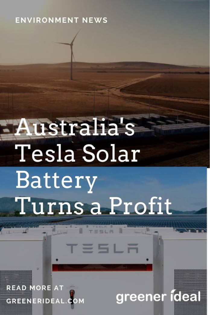 Tesla's Powerpack Project only came on stream in December, but on two occasions it has already stepped up to save the grid — and help its owners turn a quick profit. The world's biggest lithium-ion battery absorbed excess electricity on the South Australian grid, and resold it on the power market for around $810,000.