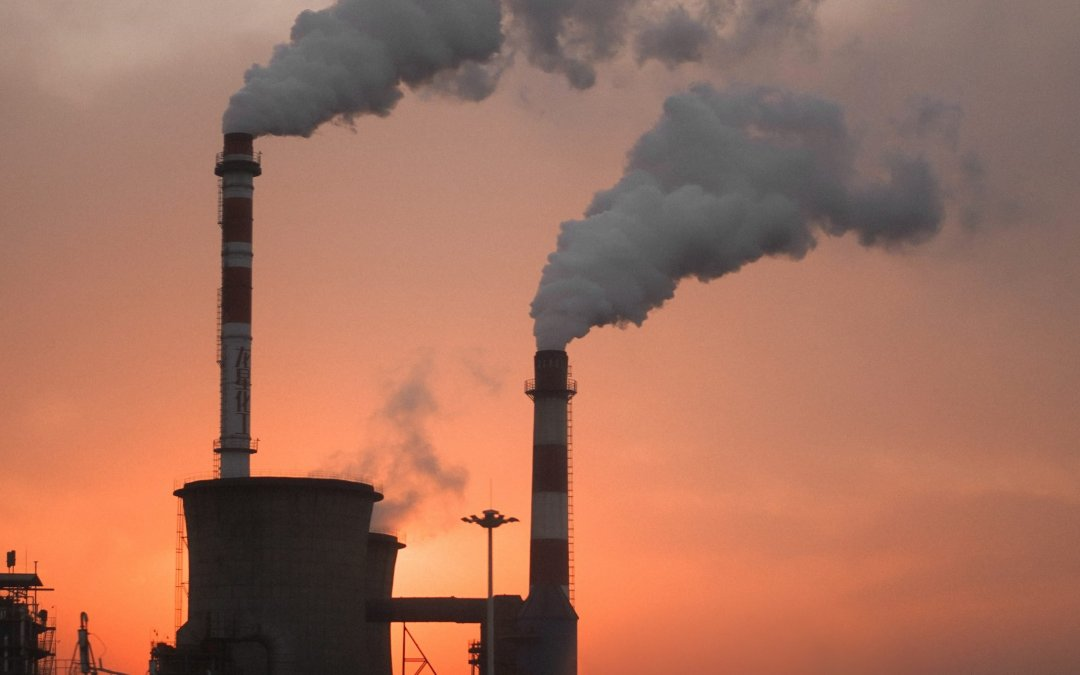 What is your business Carbon Footprint and how can you lower it?