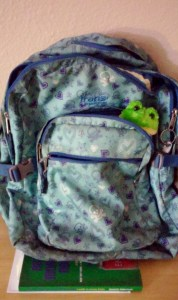 frog backpack