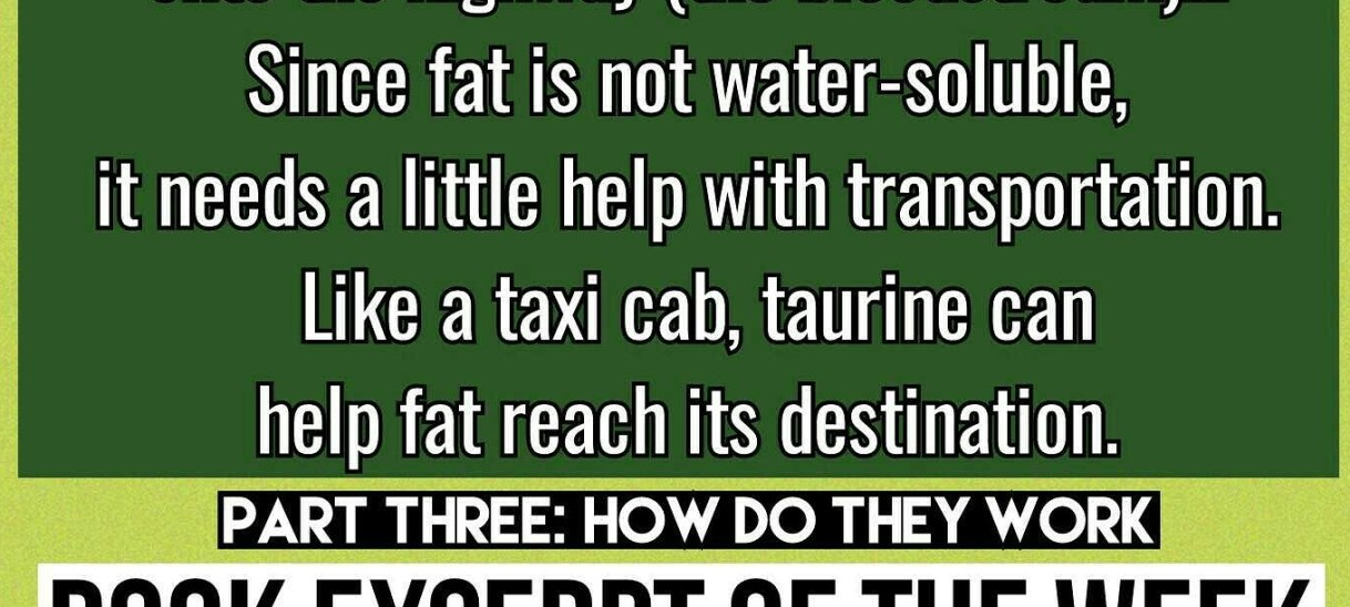 Taurine the Taxi Cab – Book Excerpt of the Week