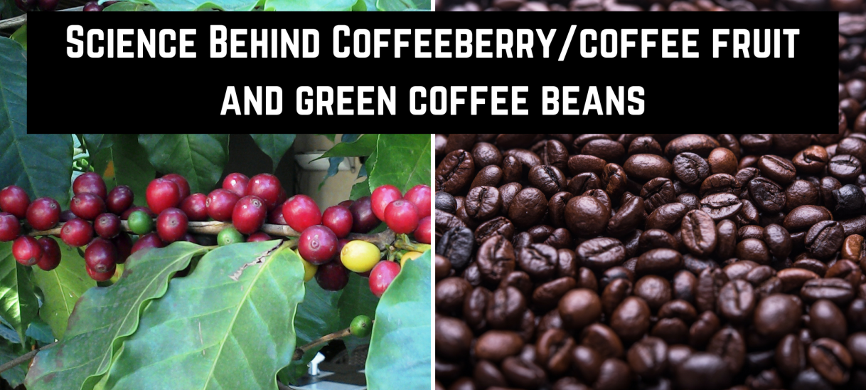 Coffeeberry and Green Coffee Beans: Game Changing Ingredients for Energy Drinks