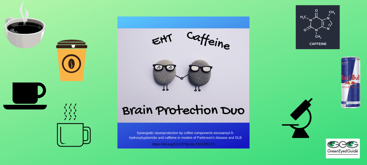 EHT and Caffeine – Brain Protection Duo