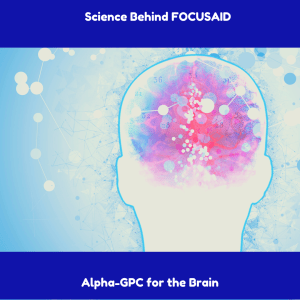FOCUSAID nootropic ingredient alpha-gpc