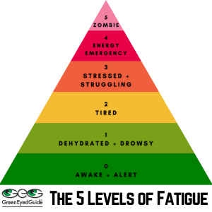 Danielle Robertson Rath's 5 Levels of Fatigue