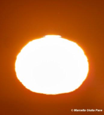 Sole con zone convettive030317IMG_0337