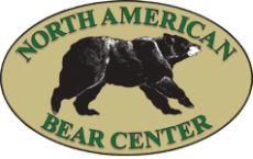 http://www.bear.org/website/