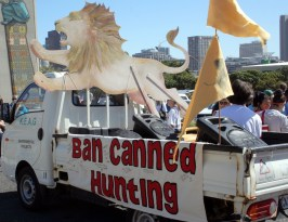 Ban canned lion hunting bakkie