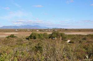 CapeNature Rocherpan Nature Reserve