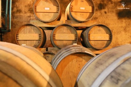 Mellasat Vineyards white pinotage cellar, Paarl Cape Winelands