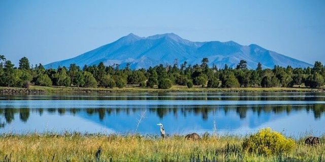 20 National Forests - Southwest