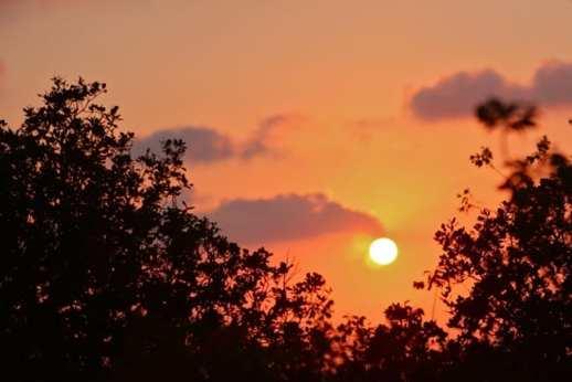 Sunset Over Ajloun Forest Reserve, Jordan