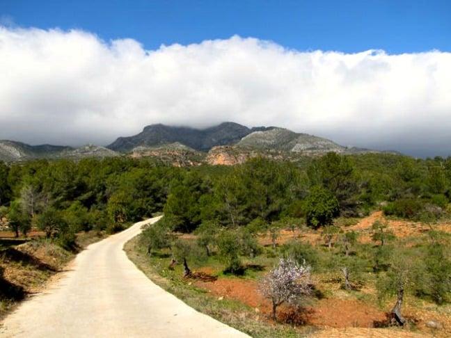 The Mountain Road Leading Down to AlozainaThe Mountain Road Leading Down to Alozaina