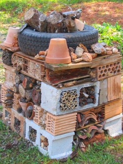 Trevor's Insect Hotel Built from Found Materials