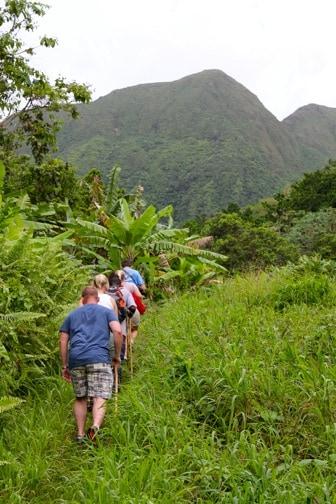 Greg's Safaris Hiking in the Rainforest of St Kitts