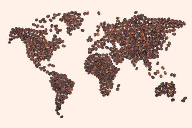 Coffee Globe Made of Beans