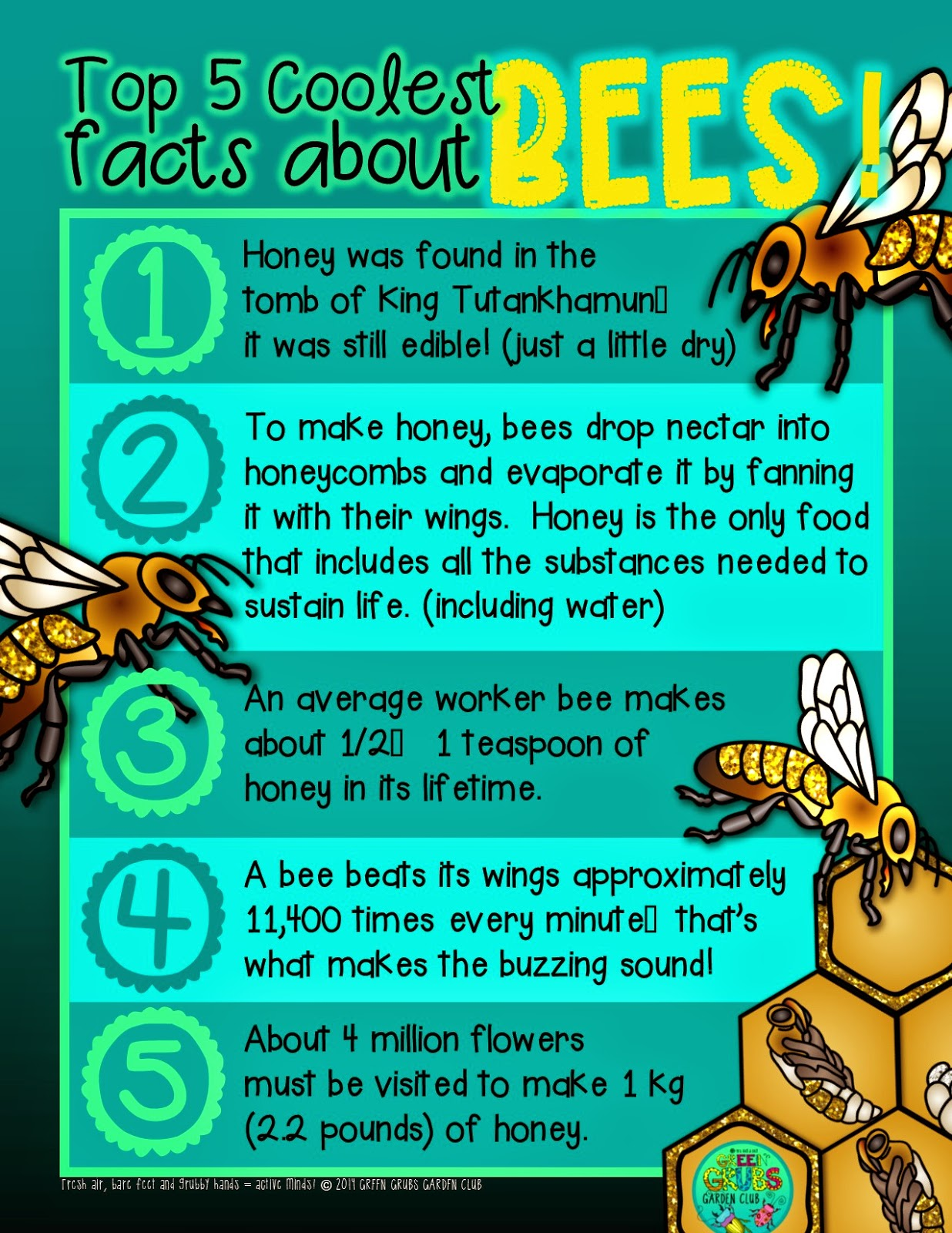 Top 5 Coolest Facts About Honey Bees Buuuzzzzzz