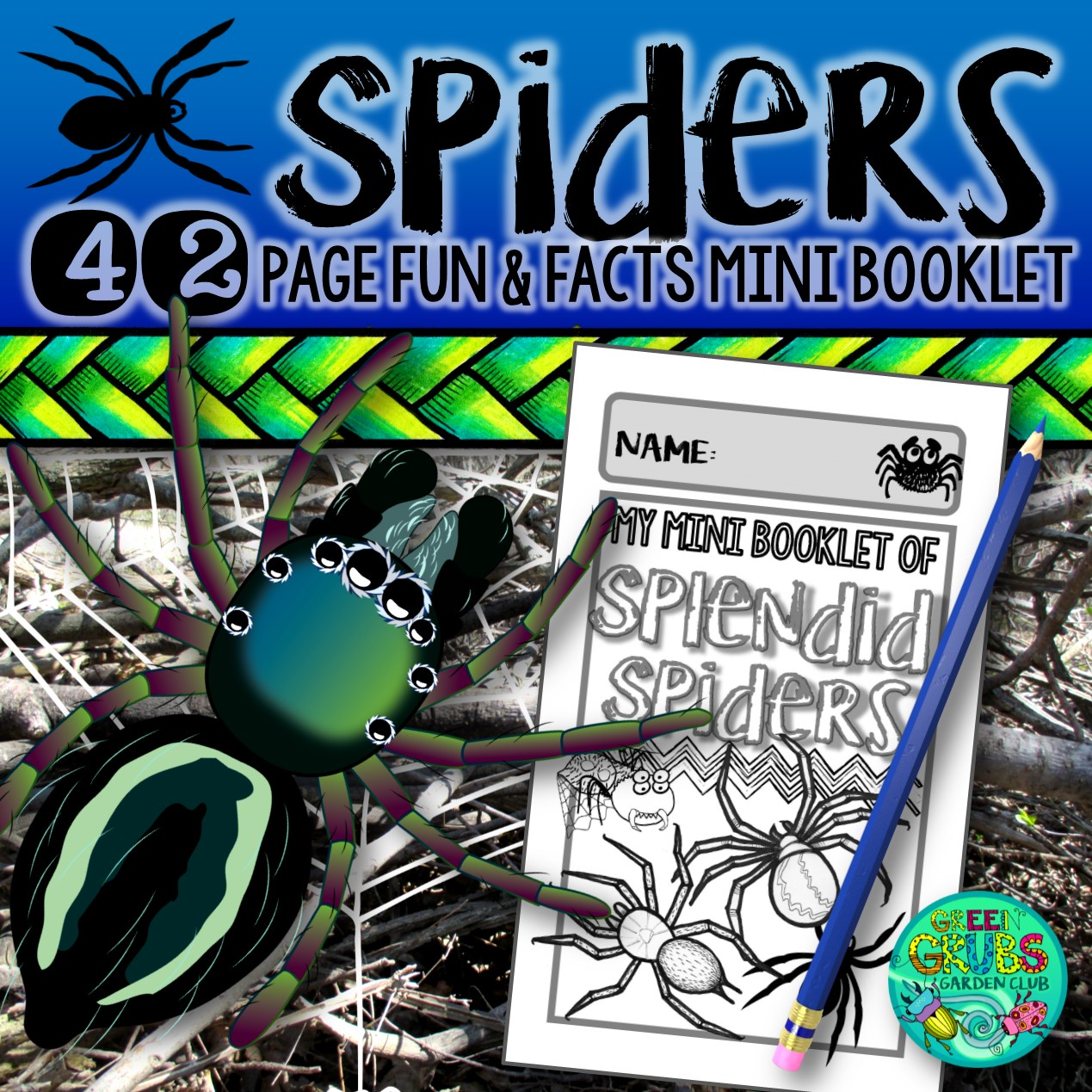 Spiders A Booklet Of Activities Celebrating The Spider S