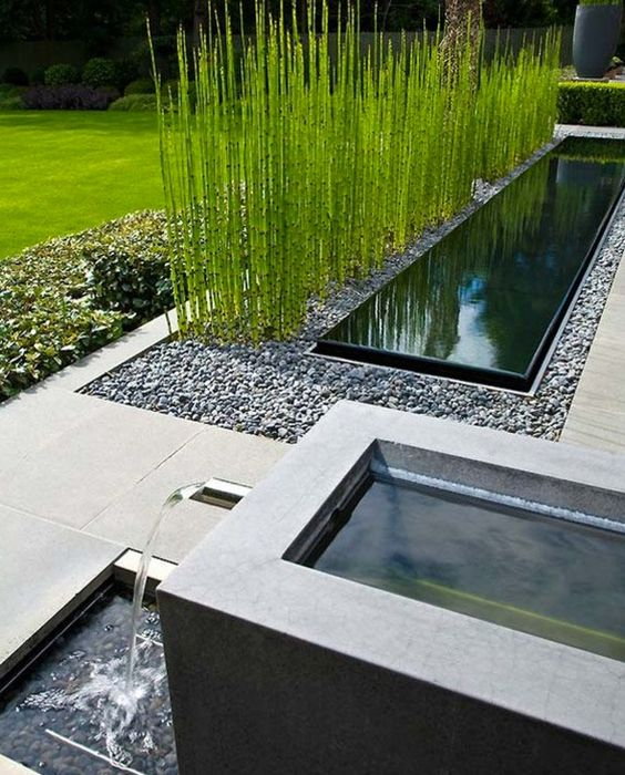 modern design with horsetail
