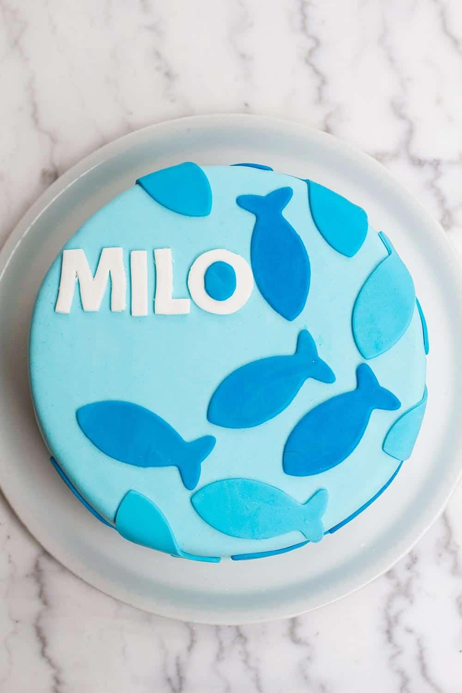 My Nephew's Baptism: Milo's Cake