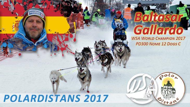 World Champions WSA 2017