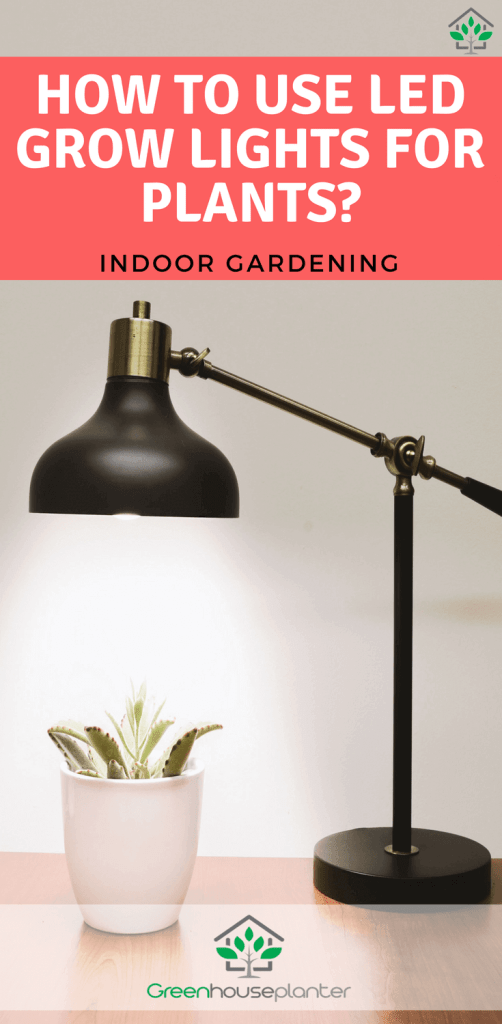 How to use LED Growlights for plants, indoor gardening