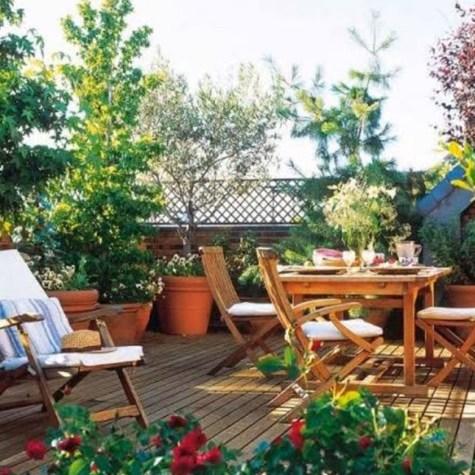 Terrace & Balcony Garderning
