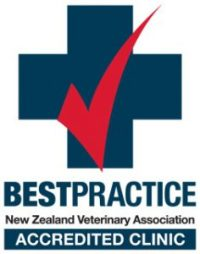 BESTpractice Accredited Clinic