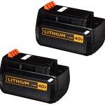 BLACKDECKER-LBXR36-2-40V-2-Pack-Lithium-Ion-Battery-0